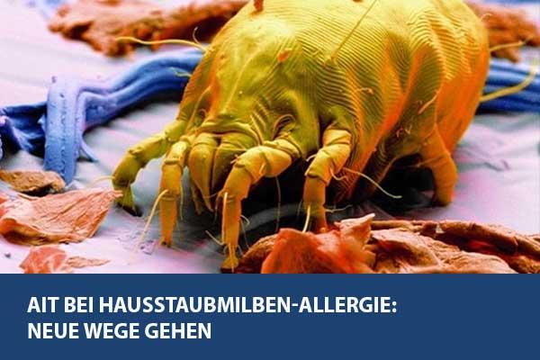 AIT bei Hausstaubmilben-Allergie: Neue Wege gehen (20. Oktober)