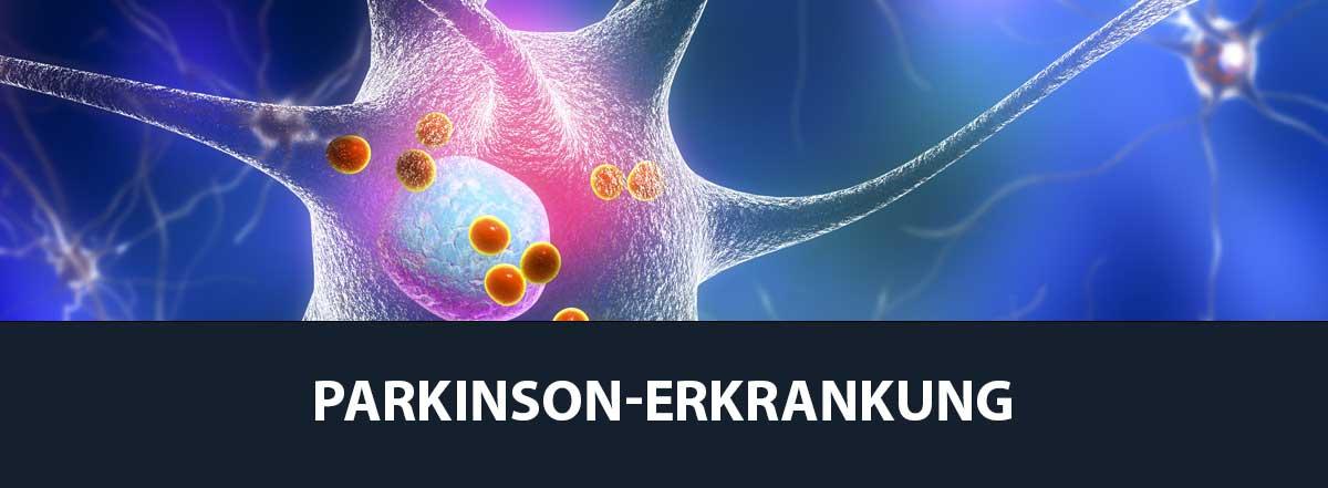 PARKINSON Online-Seminare