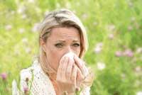 cme-punkte sammeln bei aktuellen allergie themen