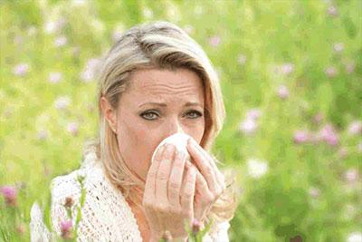 Allergie Fortbildungen