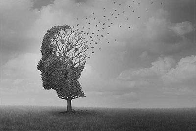 Parkinson Fortbildung