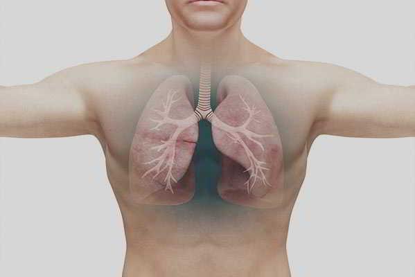 Tabakentwöhnung in der täglichen Praxis - Einfach erfolgreich rauchfrei