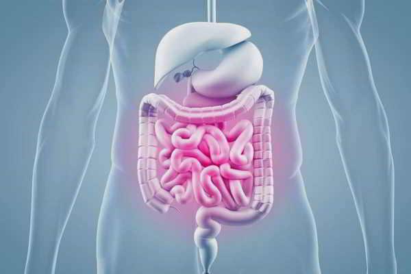 Ernährung bei chronisch-entzündlichen Darmerkrankungen (CED) zertifiziert durch die Bayerische Landesärztekammer mit 2CME-Punkten Ernährung bei chronisch-entzündlichen Darmerkrankungen (CED) zertifiziert durch die Bayerische Landesärztekammer mit 2CME-Punkten