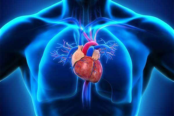 Dyspnoe – wann ist es kardial, wann pulmonal?