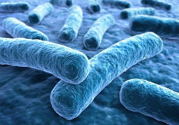 Rationale Antibiotikatherapie und Resistenzlage - ABS Refresher (kostenpflichtig) - zeitunabhängig