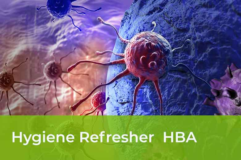 Hygienebeauftragter Arzt Blended Learning Kurs - HBA