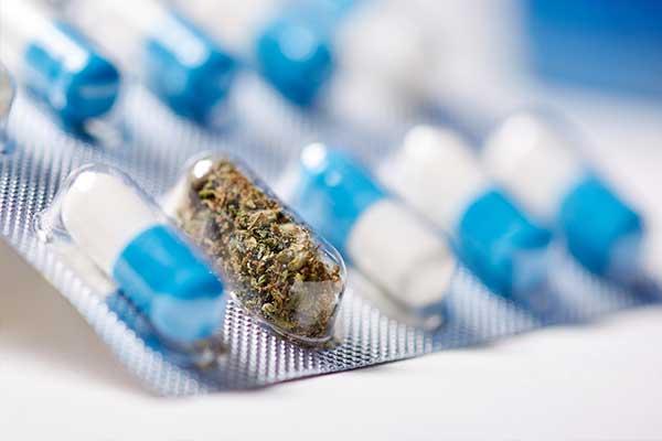 Cannabis und Cannabinoide in der Neurologie: Fokus Multiple Sklerose